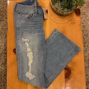 Brand New American Eagle Jeans in Artist With Tags